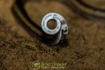 Striped Kukri Snake (Oligodon taeniatus)