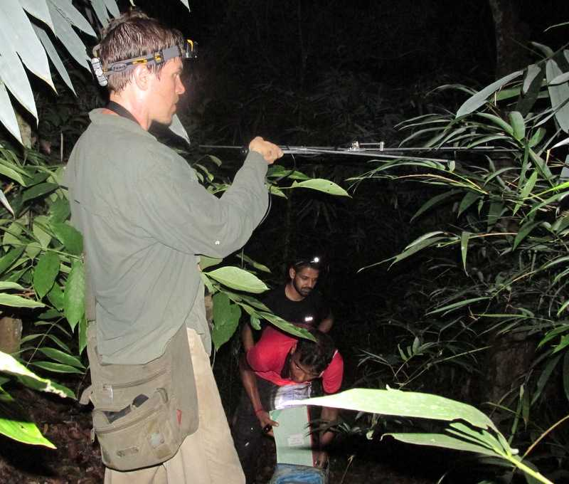 Jon Hakim Bangkok Herps herping in bangladesh radio tracking creative conservation alliance