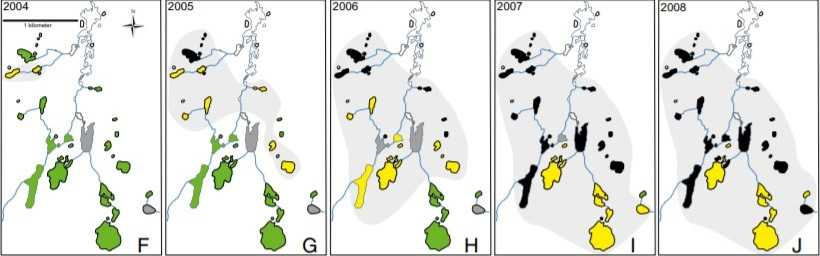 An epidemic spreads through Sixty Lakes Basin: Green depicts healthy frog lakes, yellow infected frog lakes, and black the lakes where frogs have disappeared.