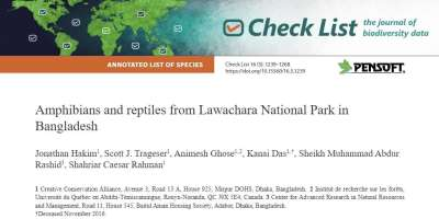 Amphibians and Reptiles Lawachara National Park